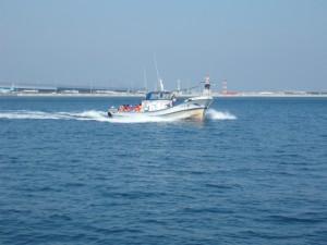 田尻マリーナでは漁業体験も
